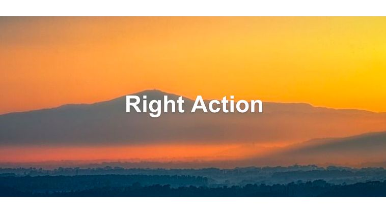 Right Action Dharma Talk
