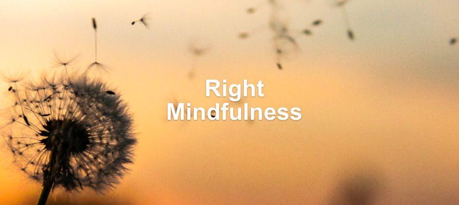 Right Mindfulness Dharma Talk
