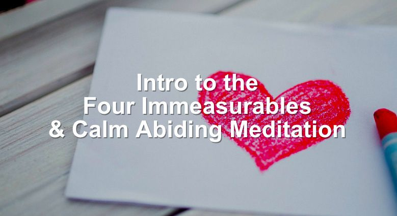 Intro to the Four Immeasurables Dharma Talk
