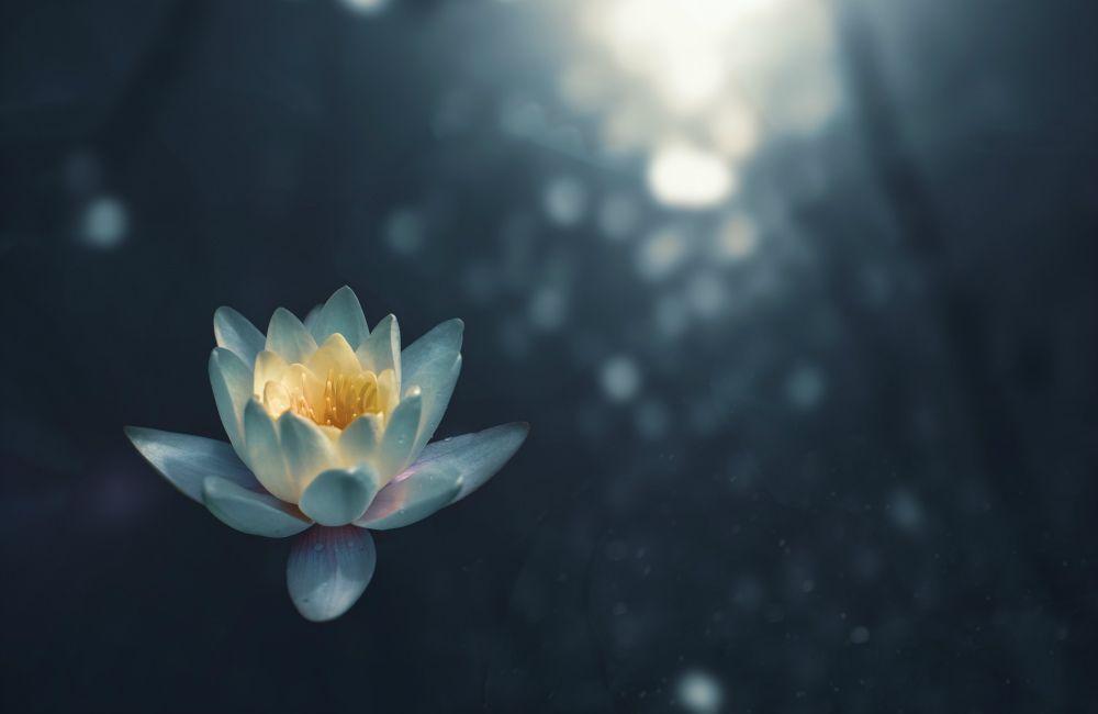One Practice Samadhi – Hui-Neng