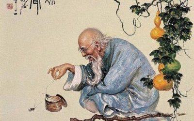 Zen Fart