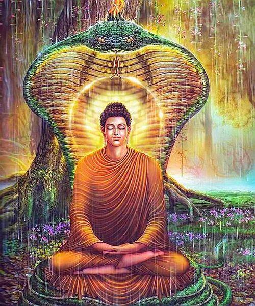 Buddhist Pranayama - Mucalinda Naga King